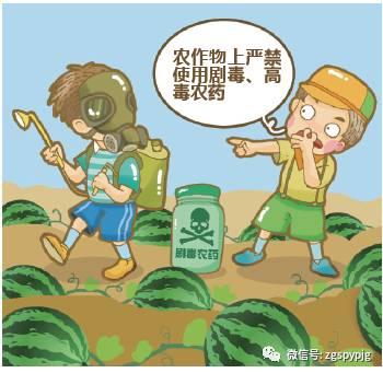 乐昌市开展农业知识科普宣传活动  提高安全生产知晓率