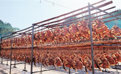 始兴县举行第二届民俗文化旅游节,板鸭飘香助力脱贫
